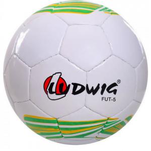 """foto de bola de futebol branca com gomos em pentágono, com escrito """"Ludwig FUT-5"""""""